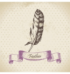 Vintage background with feather hand drawn vector image
