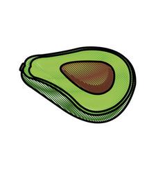 Draw slice avocado fresh food nutrition vector