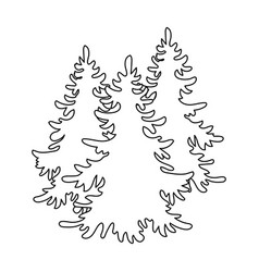 Canadian spruce canada single icon in outline vector