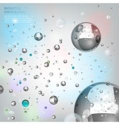Molecule infographic vector image