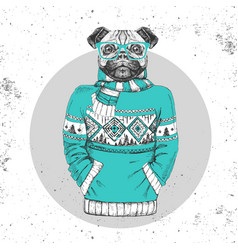 Retro hipster animal pug-dog dressed in pullover vector