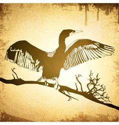 Cormorant Grunge Vintage Background vector image vector image