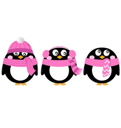 Cute pink cartoon penguin set isolated on white vector image vector image