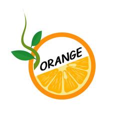 orange fruit icons flat style vector image vector image