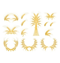 Set of Design Elements with Wheat vector image