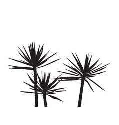 silhuette palm on the white background vector image