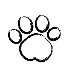 Paw print logo vector image