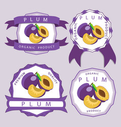 the theme plum vector image vector image