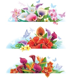 Set banners with flowers vector