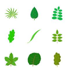 leaf icons set cartoon style vector image