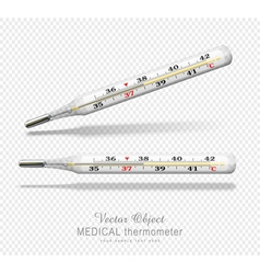 Term vsmedical thermometer isolated object vector