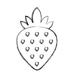 Sweet strawberry fruit vector