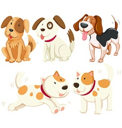 Different kind of puppy dogs vector