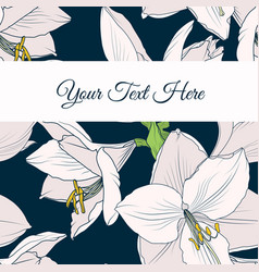 Hippeastrum amaryllis lilly floral card template vector
