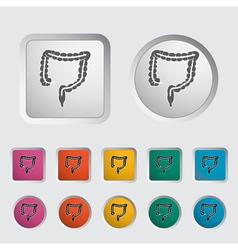 intestines vector image vector image