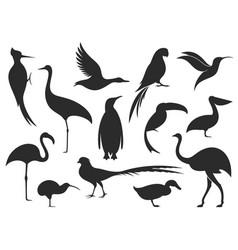 Wild bird bird silhouette vector