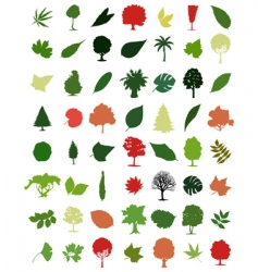 Trees and leafs vector