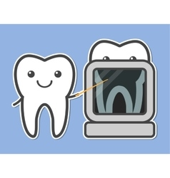 Two teeth demonstrated x-ray vector