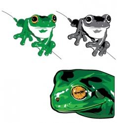 treefrog vector image
