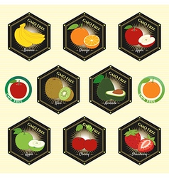 Badge fruit set of natural fresh gmo free vector