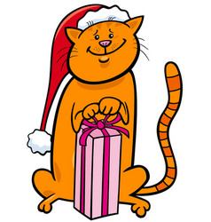 cat with christmas gift cartoon vector image