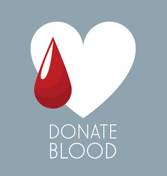 Donate blood white heart and drop vector
