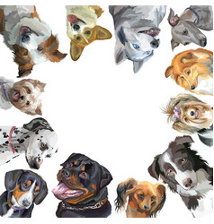 group of dogs different breeds in square isolated vector image vector image