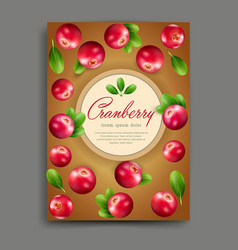 lliustration with realistic cranberry isolated vector image vector image