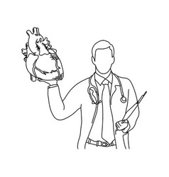 male doctor holding a human heart vector image
