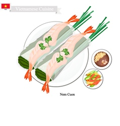 Nem Cuon or Vietnamese Traditional Spring Rolls vector image