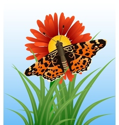 Realistic butterfly on flower vector