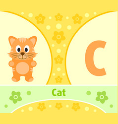 the english alphabet with cat vector image
