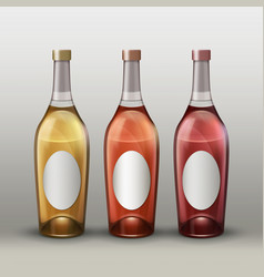 bottles with labels vector image vector image