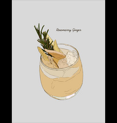 Ginger rosemarry martini cocktail hand drawn vector