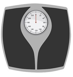 Bathroom scales vector image