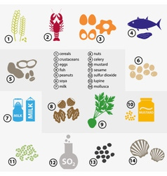Colorful set of typical food alergens for vector