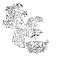 Zentangle sketch bird on nest hand drawn doodle vector
