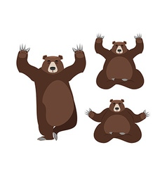Bear meditates wild animals on white background vector