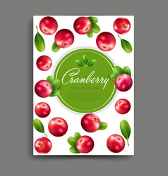 Lliustration with realistic cranberry isolated vector