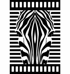 Zebra face vector