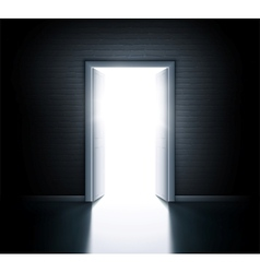 Open door vector image