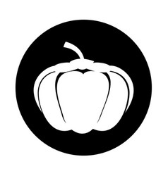 Pumpkin fresh vegetable icon vector