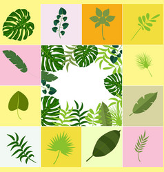Tropical leaves palm summer exotic jungle green vector