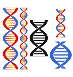 DNA vector image