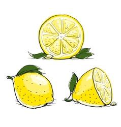 Ripe lemon with leaf vintage vector