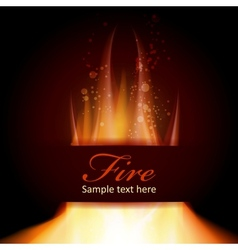 Fire flame on black background with Text space vector image vector image