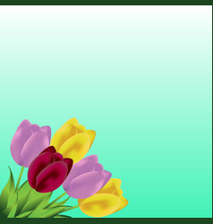 Lovely spring background with tulip flowers vector