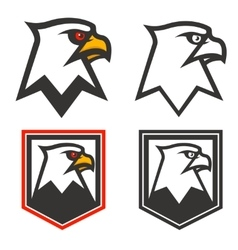 Eagle head on background from shield design vector
