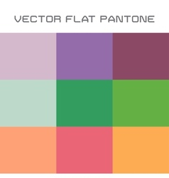 Flat pantone color swatch vector