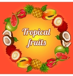 Wreath of tropical fruits on bright background vector